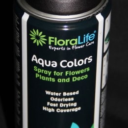 Aqua colors Floralife (Oasis)