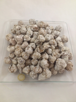 Coco ball (coco fruit) white-wash 500 gr.
