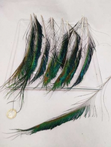 Feathers peacock (sword feathers) 25-35 cm 12 p.