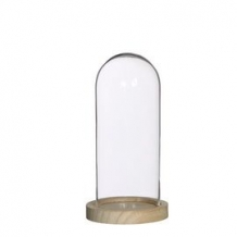 Glass Bell Jar with Wooden Base H 20 cm Ø 10 cm